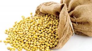 Lượng hạt lanh cần thiết cho cơ thể
